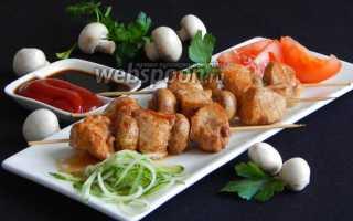 Шашлычки из куриного мяса на сковороде – пошаговый рецепт с фото. Как приготовить