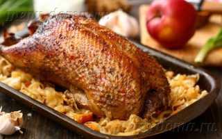 Утка с капустой – пошаговый рецепт с фото. Как приготовить