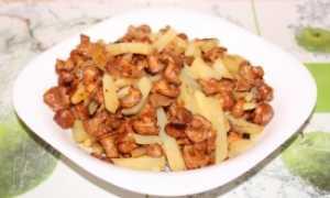 Курица с лисичками в скороварке – пошаговый рецепт с фото – для мультиварки