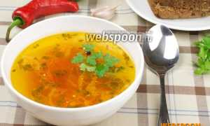 Бульон из индейки с помидорами и острым перцем – пошаговый рецепт с фото. Как приготовить