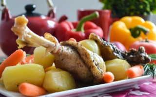 Запеченная грудка гуся с вяленой клюквой. – пошаговый рецепт с фото – для духовки