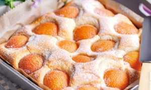 Оладьи с консервированными персиками – пошаговый рецепт с фото. Как приготовить