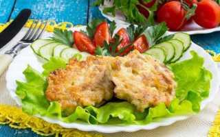 Биточки из куриного филе – пошаговый рецепт с фото. Как приготовить