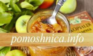 Варенье из яблок с изюмом – пошаговый рецепт с фото. Как приготовить