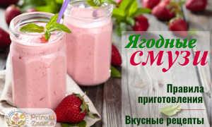 Молочный коктейль с вишней и смородиной – пошаговый рецепт с фото – для блендера