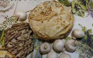 Блины с грибной начинкой – пошаговый рецепт с фото. Как приготовить